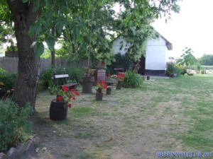 20110722 1888761154 aratas-2011-07-09-fazekasne--161
