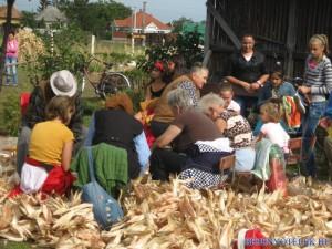 20121029 1175762294 kukoricanap-2012-759 (1)