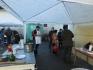 Halászléfőző verseny és Pálinkamustra a Napköziben
